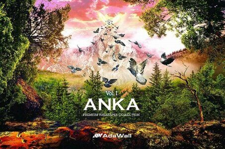 ada_wall_anka_cover.jpg